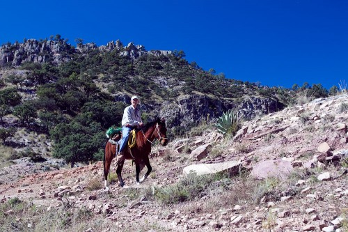 Horseriding in Copper Canyon
